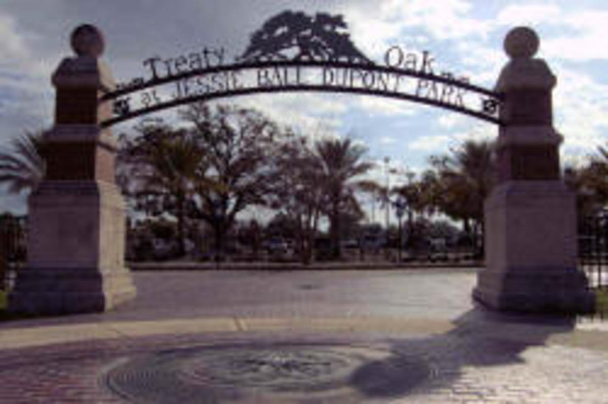 Entrance to the park where the Treaty Oak reigns supreme.