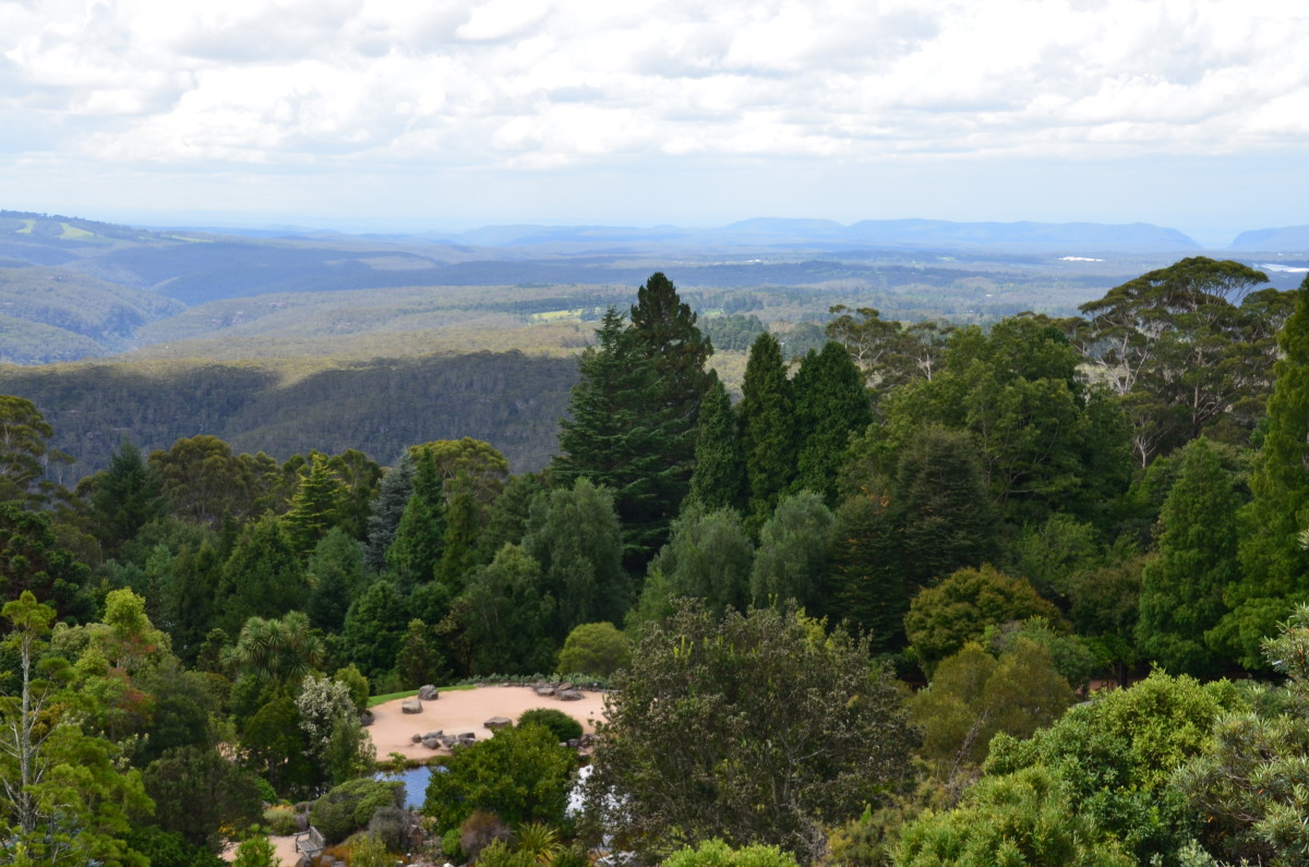 Looking over the Blue Mountains Botanic Gardens