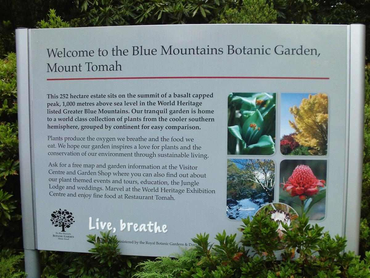 Sydney Botanical Gardens Opening Hours The Royal Botanic Gardens Tourism Resort Best Travel