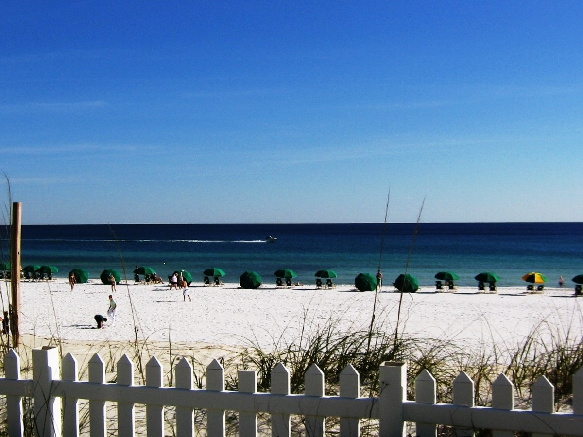 Most people visit the Destin area for the preponderance of beautiful beaches, with white sands and emerald waters.  As well as Destin Beach, there are a number of State Park Beaches to visit.  You will never be short of sand and sea in the Destin.