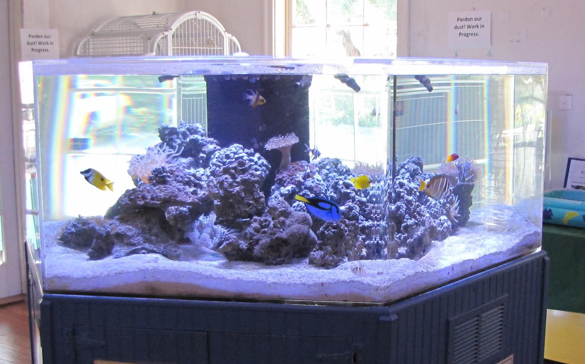 Hex Aquarium