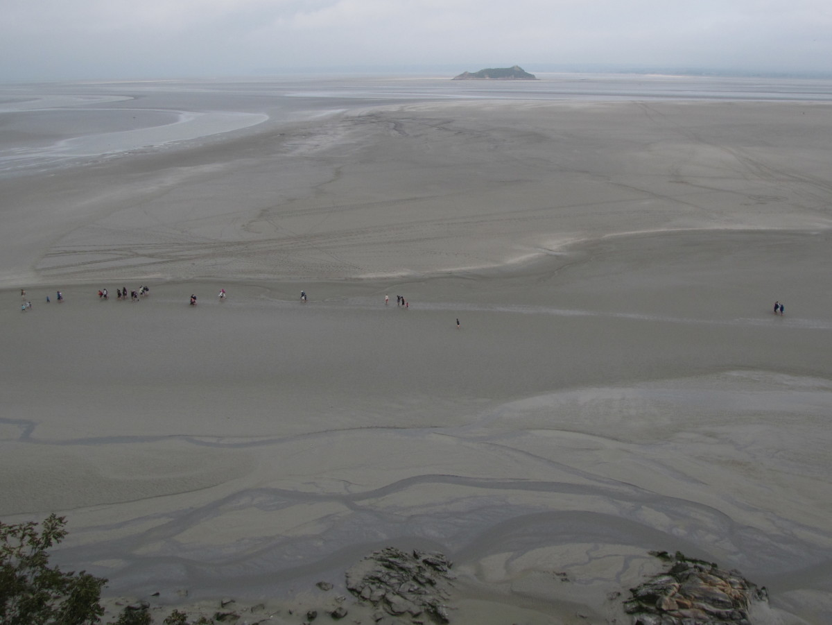 A group out on the mud flats during low tide