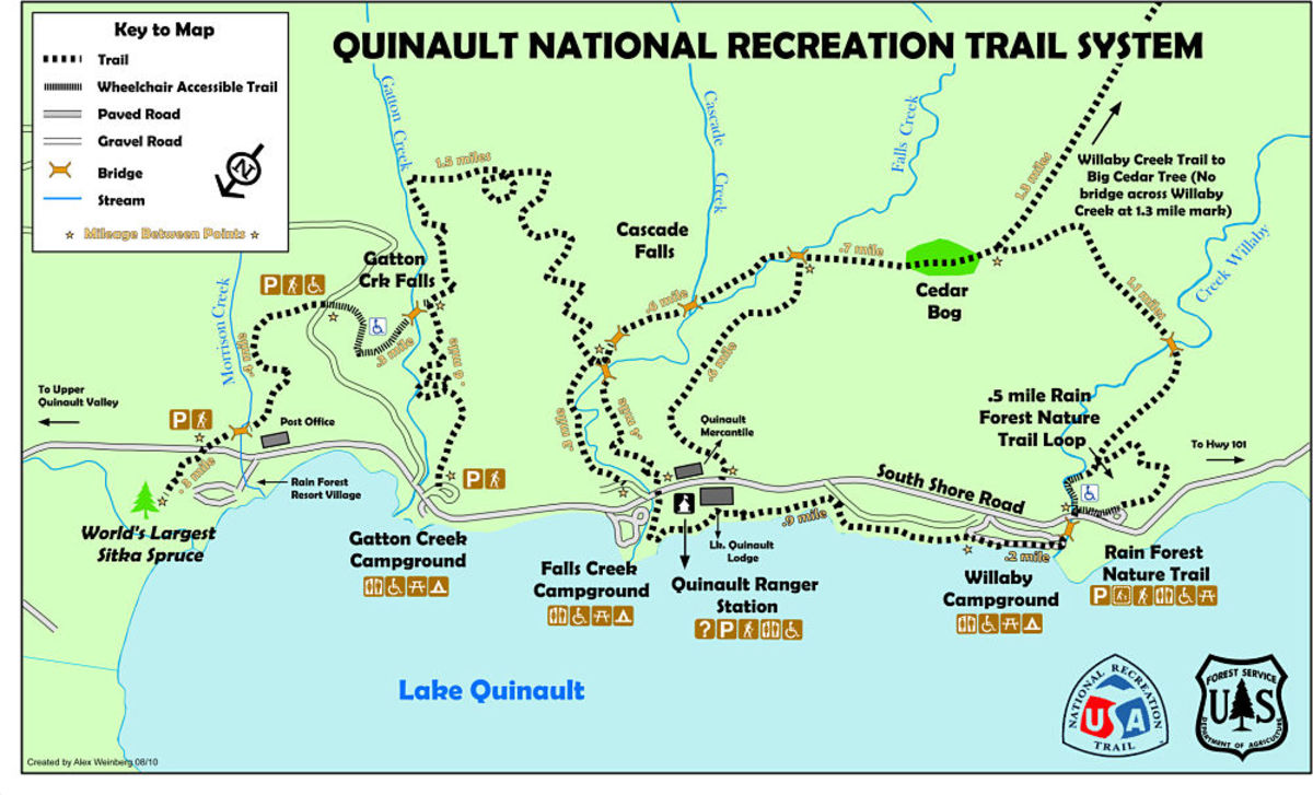 quinaulta-lodge-a-river-a-rainforest-a-native-people