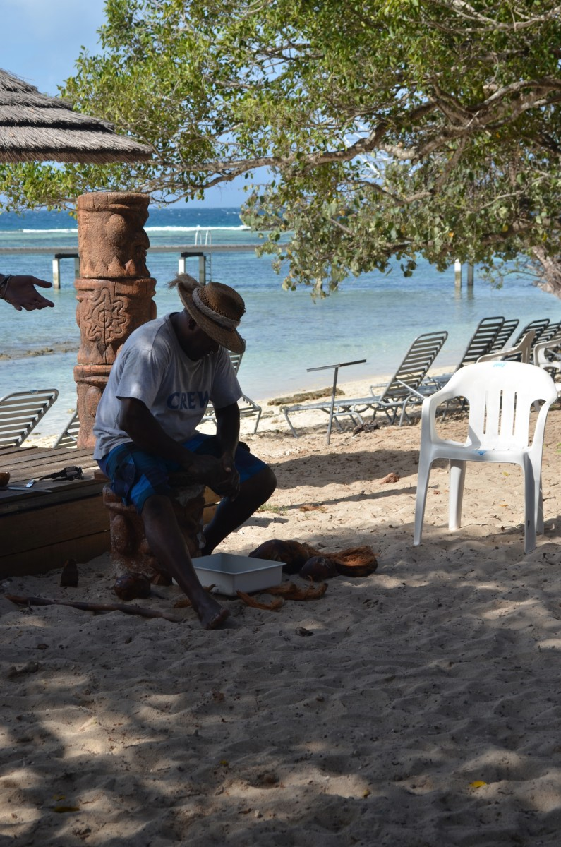 Husking coconuts (c) A. Harrison