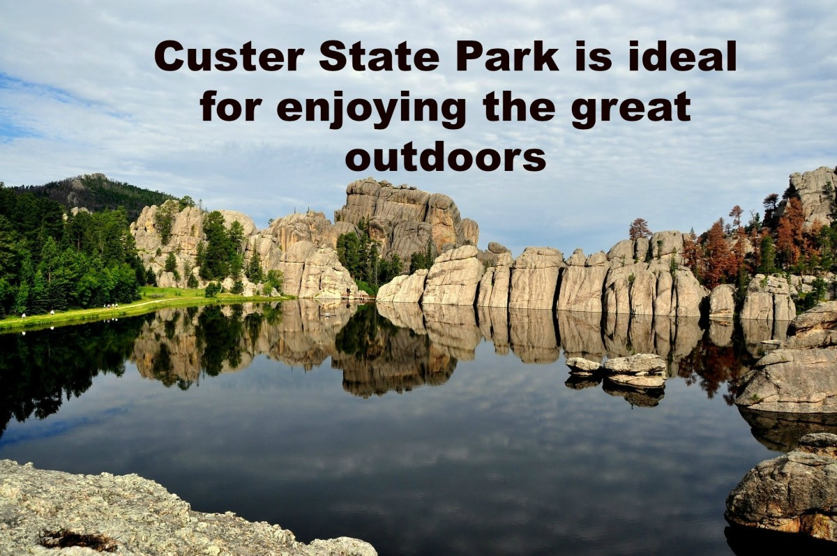 If you want to enjoy beautiful scenery and amazing wildlife, Custer State Park is the place to go.