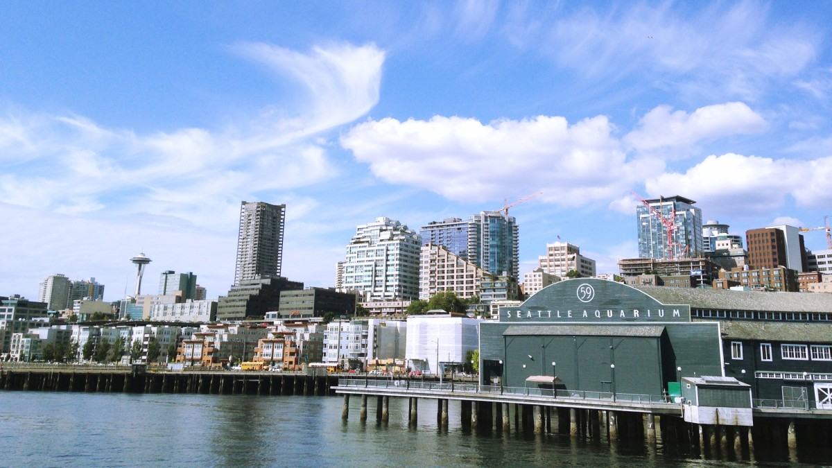 The city of Seattle and the Seattle Aquarium from the vantage point of our harbor cruise.