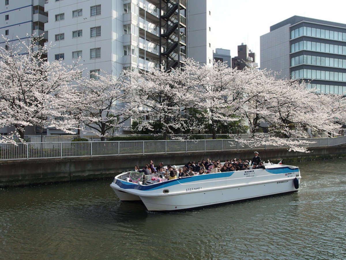 Cruise Tokyo's Sumida River