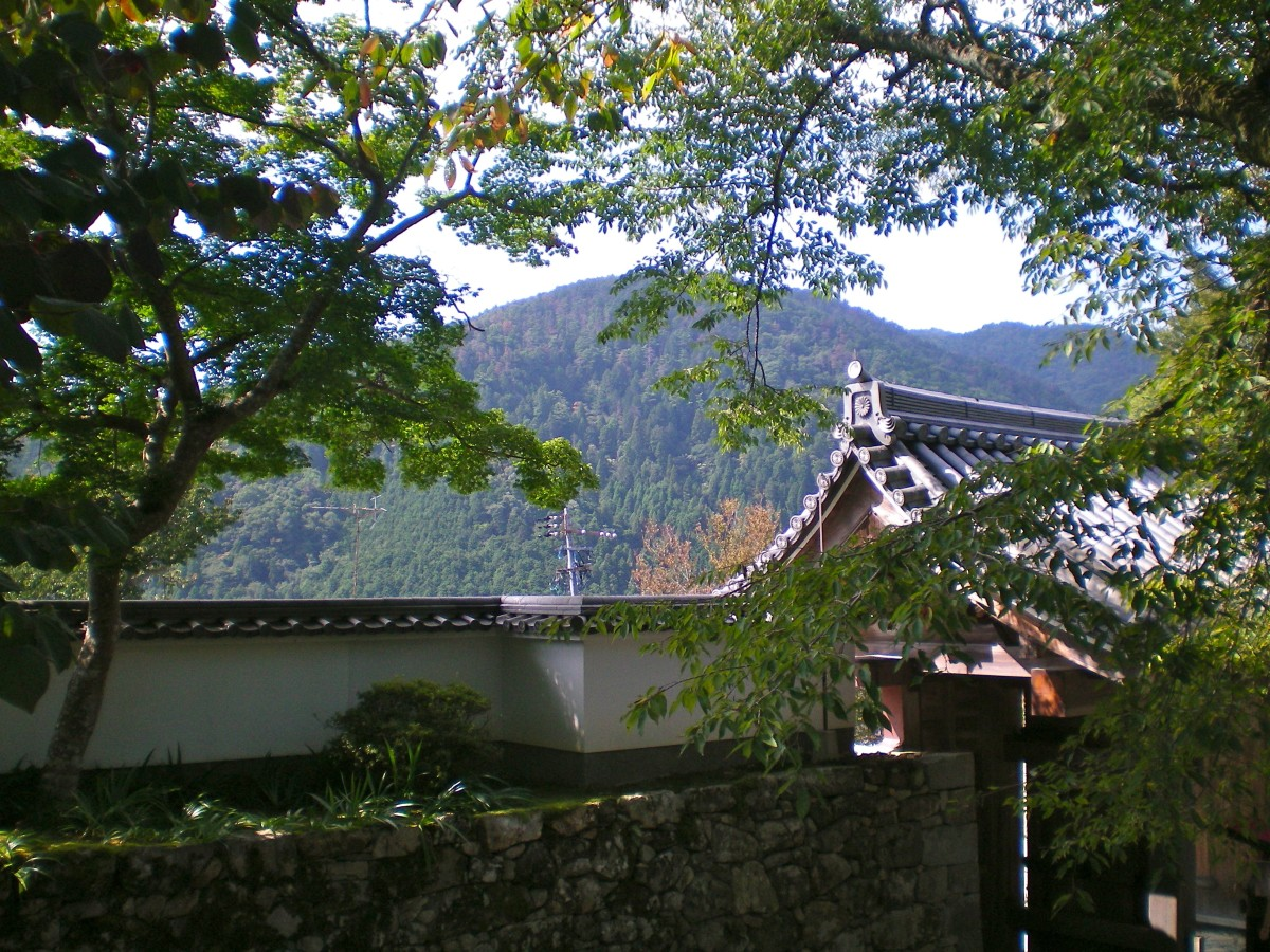 View from temple grounds towards the mountain countryside, Ohara (c) A Harrison