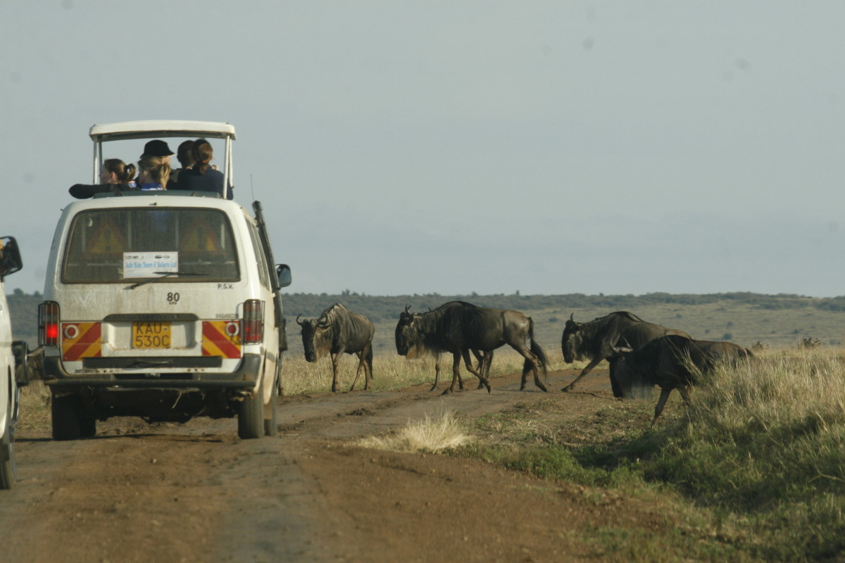 Tourists at Nairobi National Park