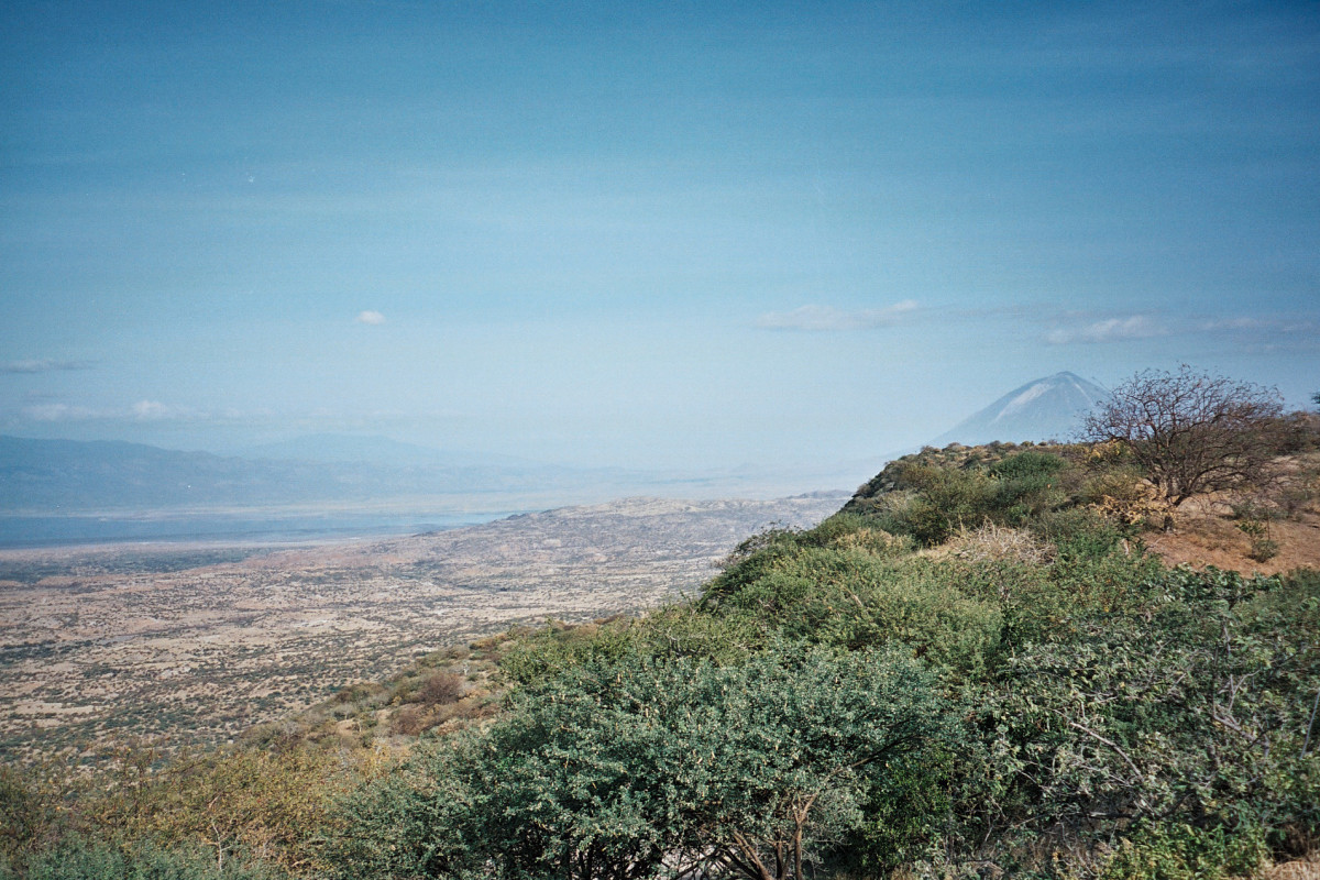 A Section of Rift Valley