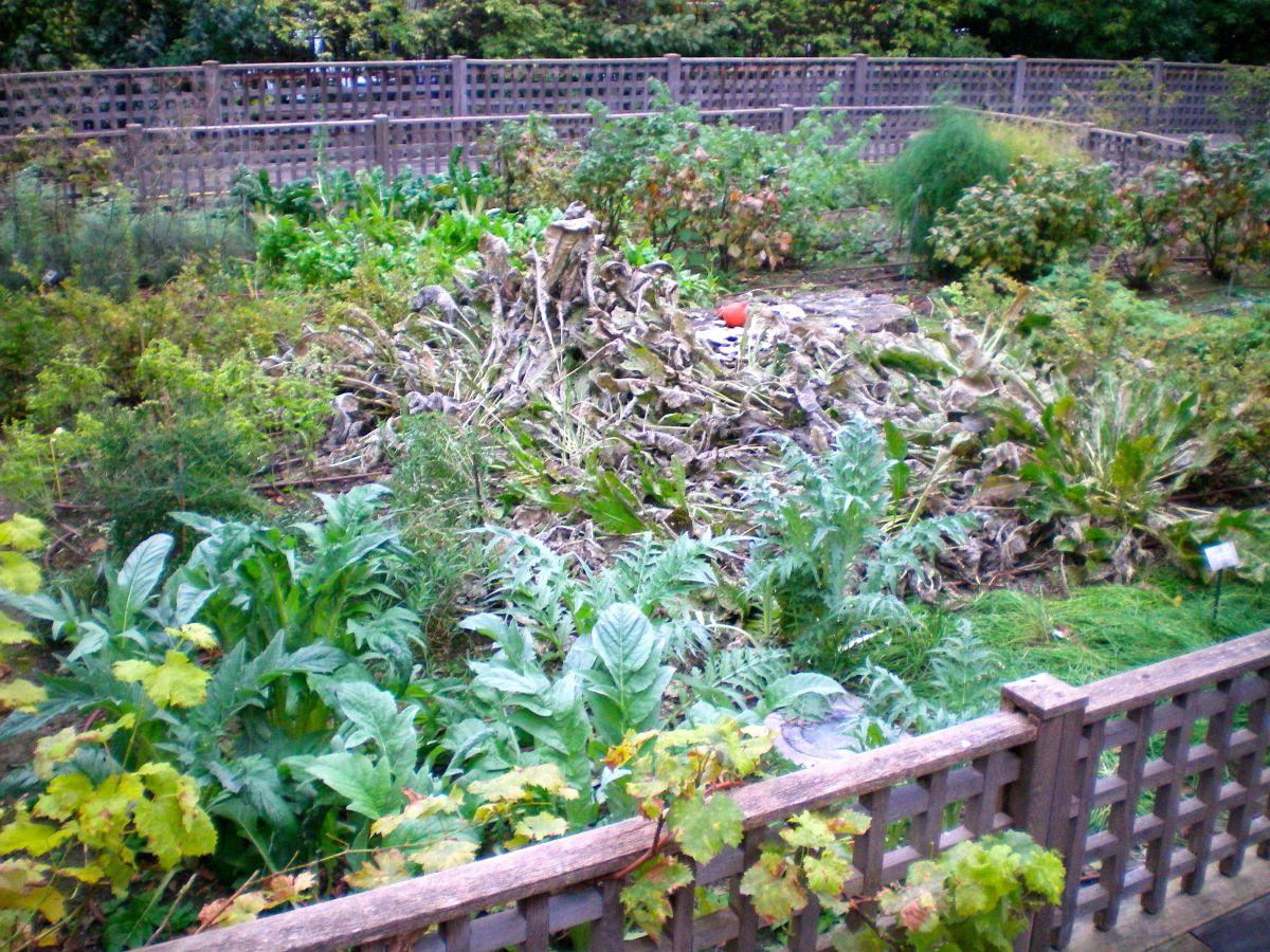 A medieval garden (c) A. Harrison