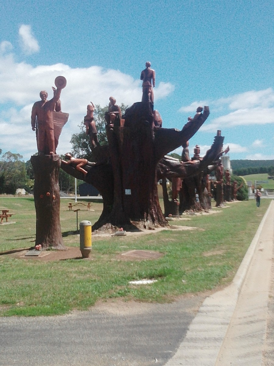 legerwoods-memorial-trees-tasmanias-ww1-heritage