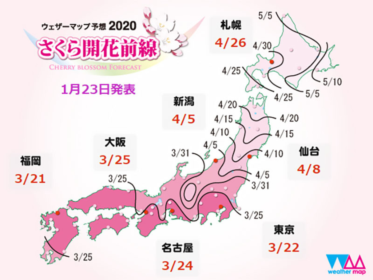Sakura season forecast for 2020.