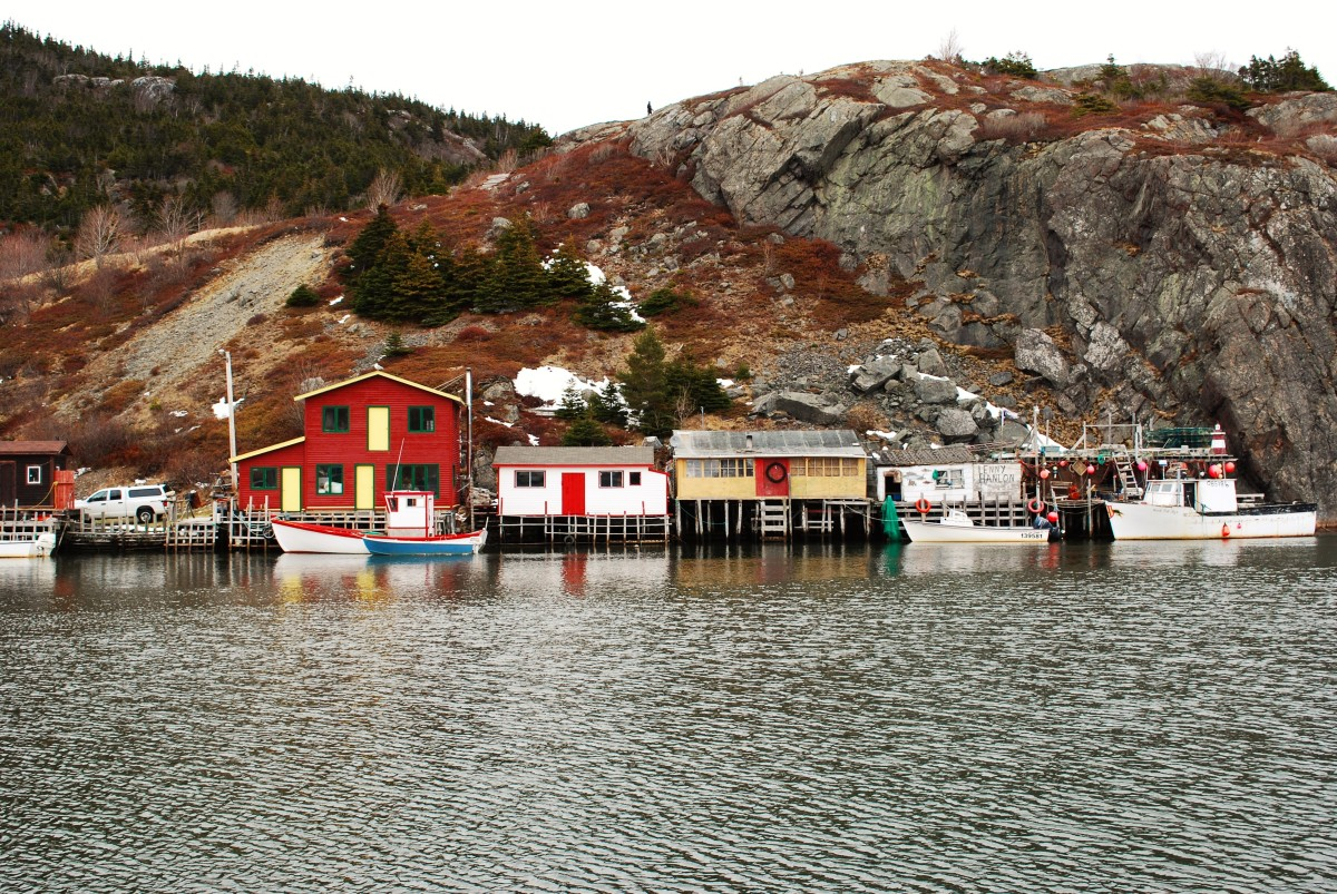 Fishing Stages, Quidi Vidi