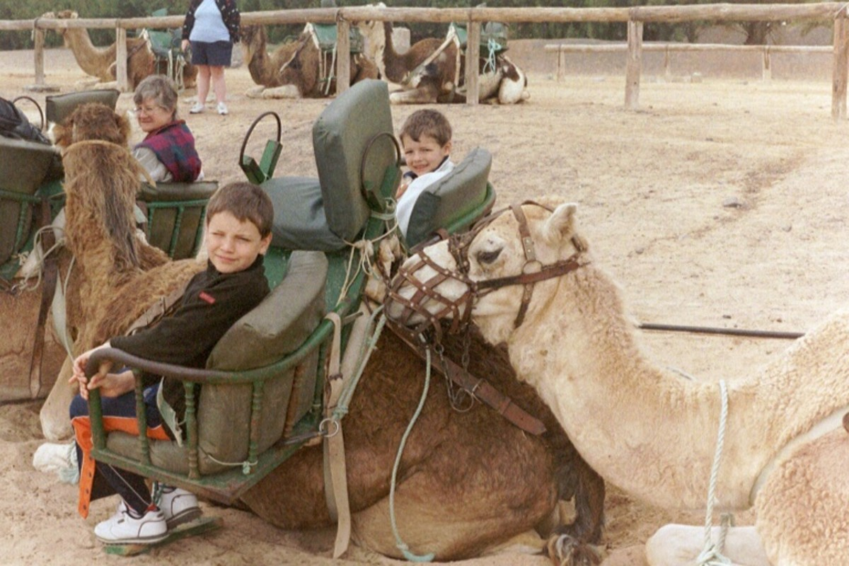 The kids will love a camel ride up the side of mountain!