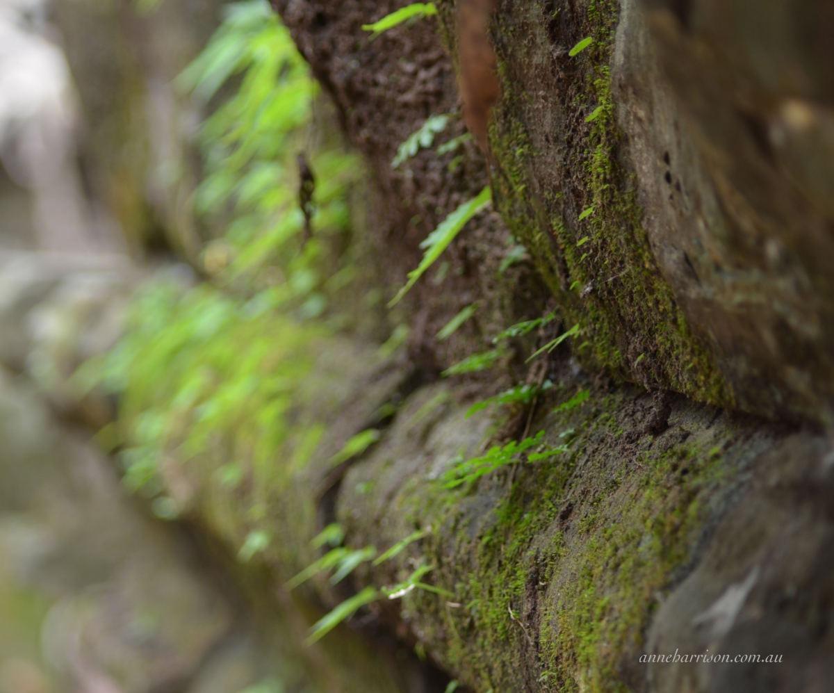 angkors-forgotten-temples