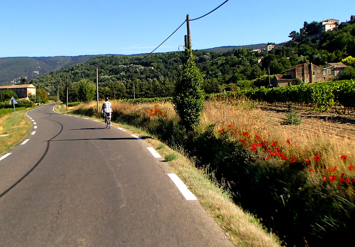 Quiet scenic Provence road is ideal for biking.