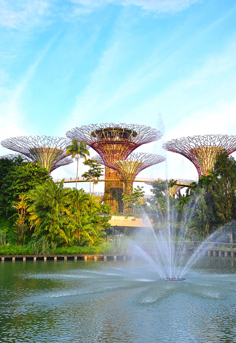 Another view of Singapore's now iconic Super Trees Grove.