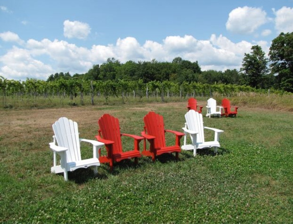 Black Birch Winery