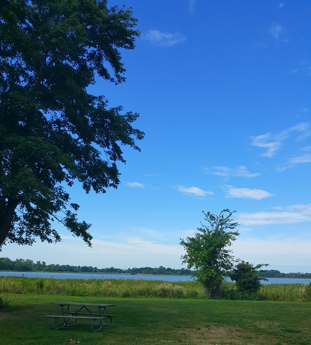 East Harbor State Park is a great place for a picnic!