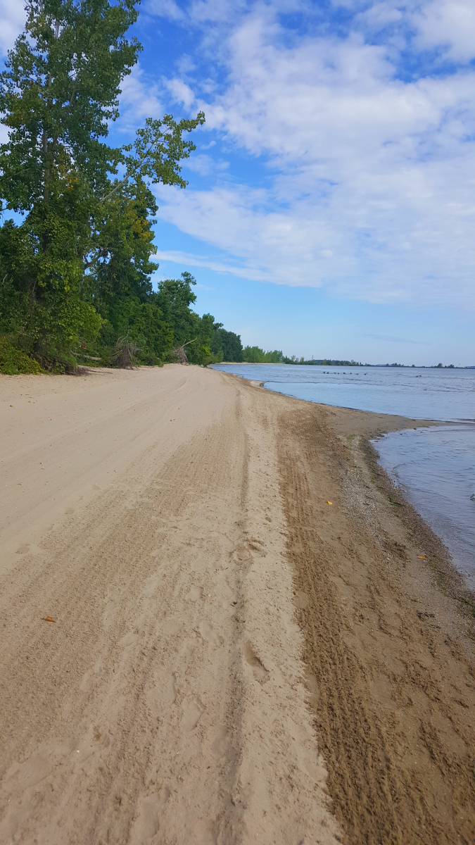 A view of the spacious beach at East Harbor State Park.