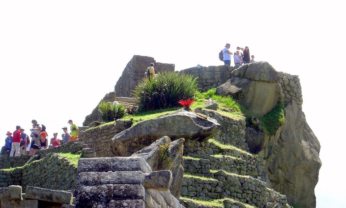 Travelers explore the ruins of Machu Picchu, adorned with brilliant green grass and vivid native flowers.