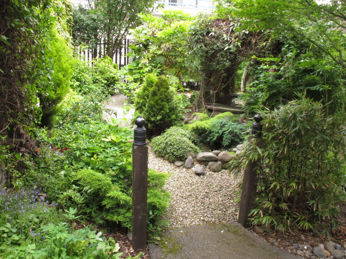 The tiny garden dedicated to the memory of Cardinal Basil Hume.