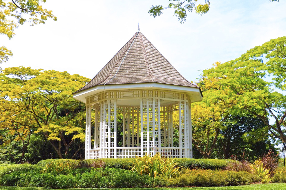 Singapore Botanic Gardens. A must-visit free UNESCO site perfect for visitors looking to save money during their Singapore trip.