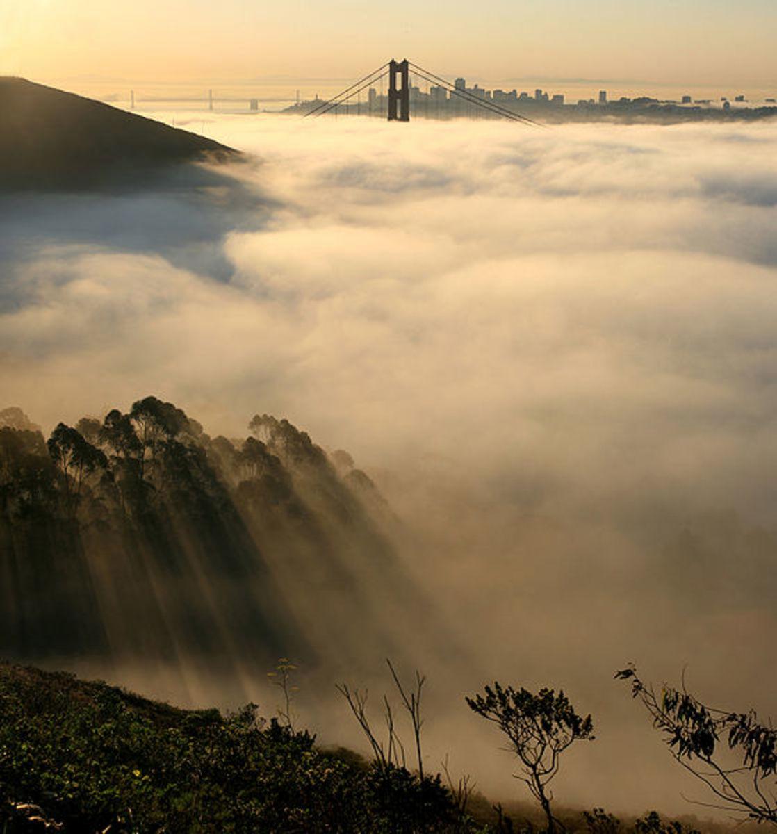 San Fran: Socked In Again