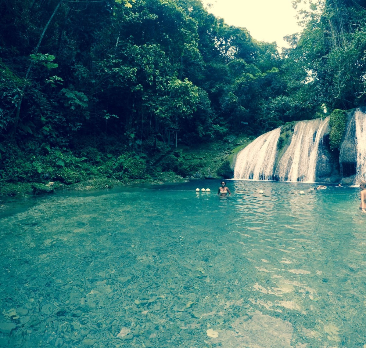 The movie Cocktail filmed in Jamaica at the Reach Falls. Today, swimmers can enjoy nature at the quiet waterfall/