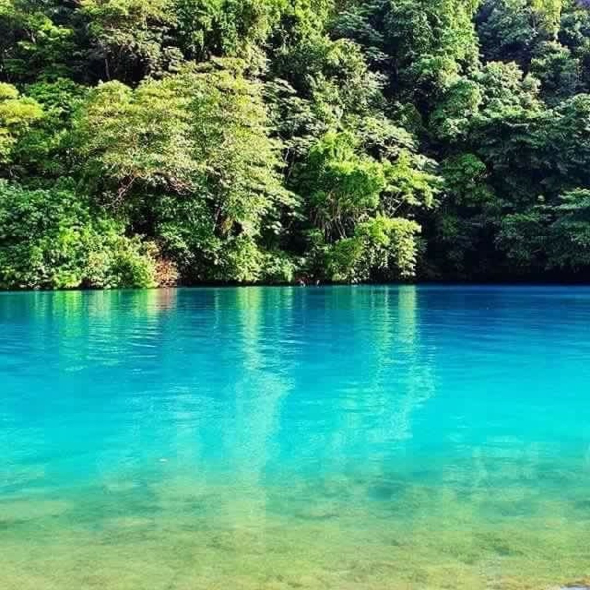 The serene, shimmery Blue Lagoon where the Blue Lagoon movie was filmed is a must see to Jamaica.