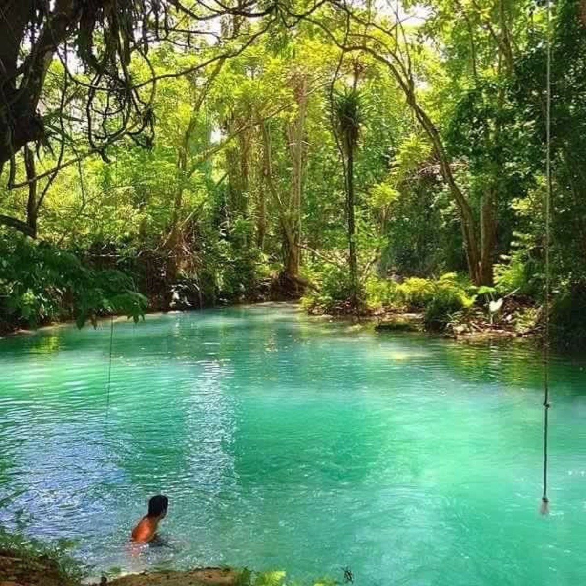This jungle surrounded river flows into the beach at Frenchman's Cove for a heavenly experience.