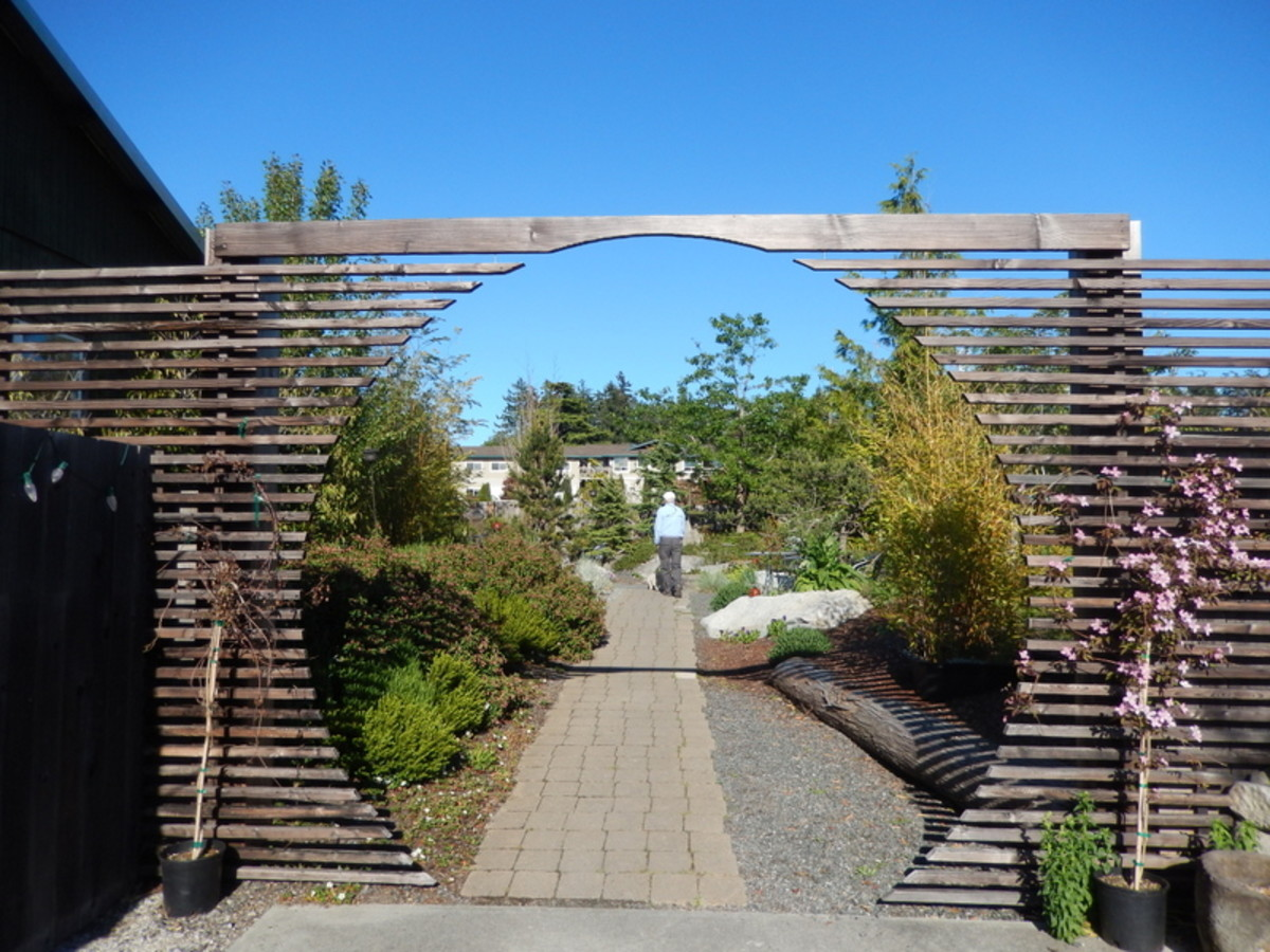 The enticing entrance to garden seating at the Backdoor Kitchen, a popular upscale restaurant in Friday Harbor that welcomes diners and their pets.