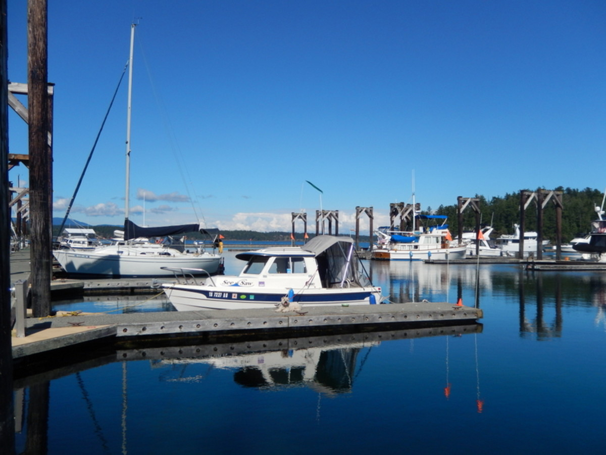 Our dog, Lindy, enjoying the view from the dock beside our 16' C-Dory, See-Saw, in beautiful Friday Harbor Marina.