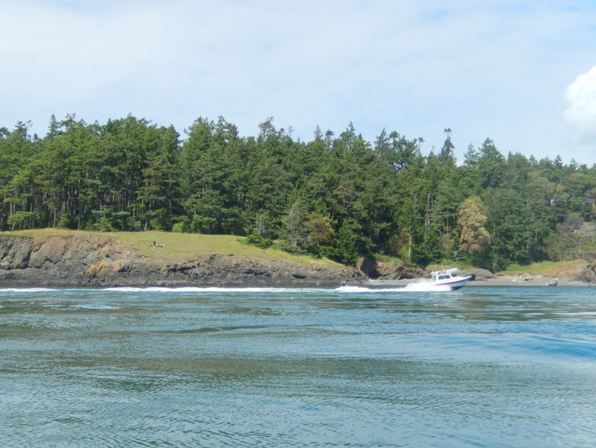 Our companion boat, another small C-Dory, motors near the wooded shore of Fidalgo Island as it approaches Deception Pass on the way back to Cornet Bay.