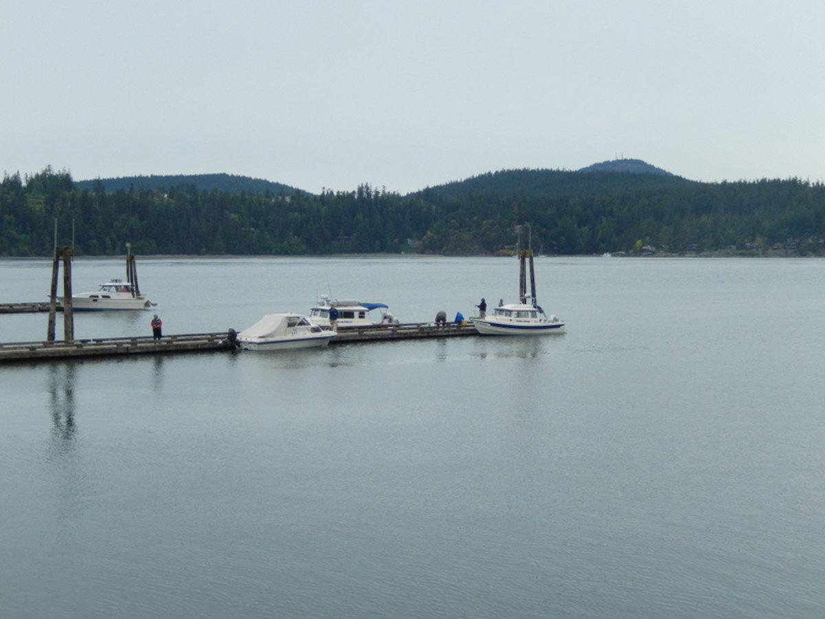 Small boats at floating docks in Cornet Bay, Whidbey Island, Wa. Boats and owners can stay overnight here or just stop to secure gear before crossing to Friday Harbor.