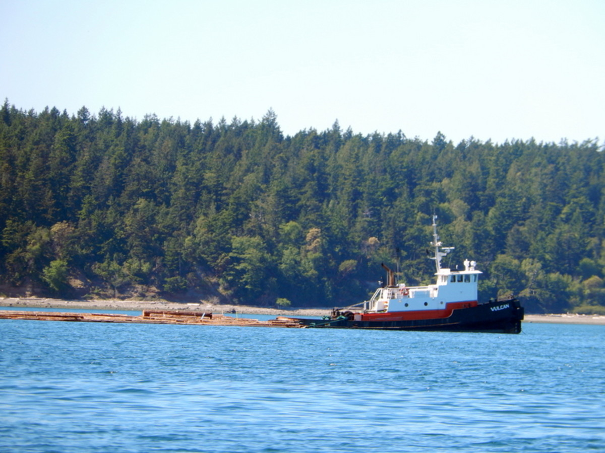 A towboat pulling a raft of logs near Lopez island.