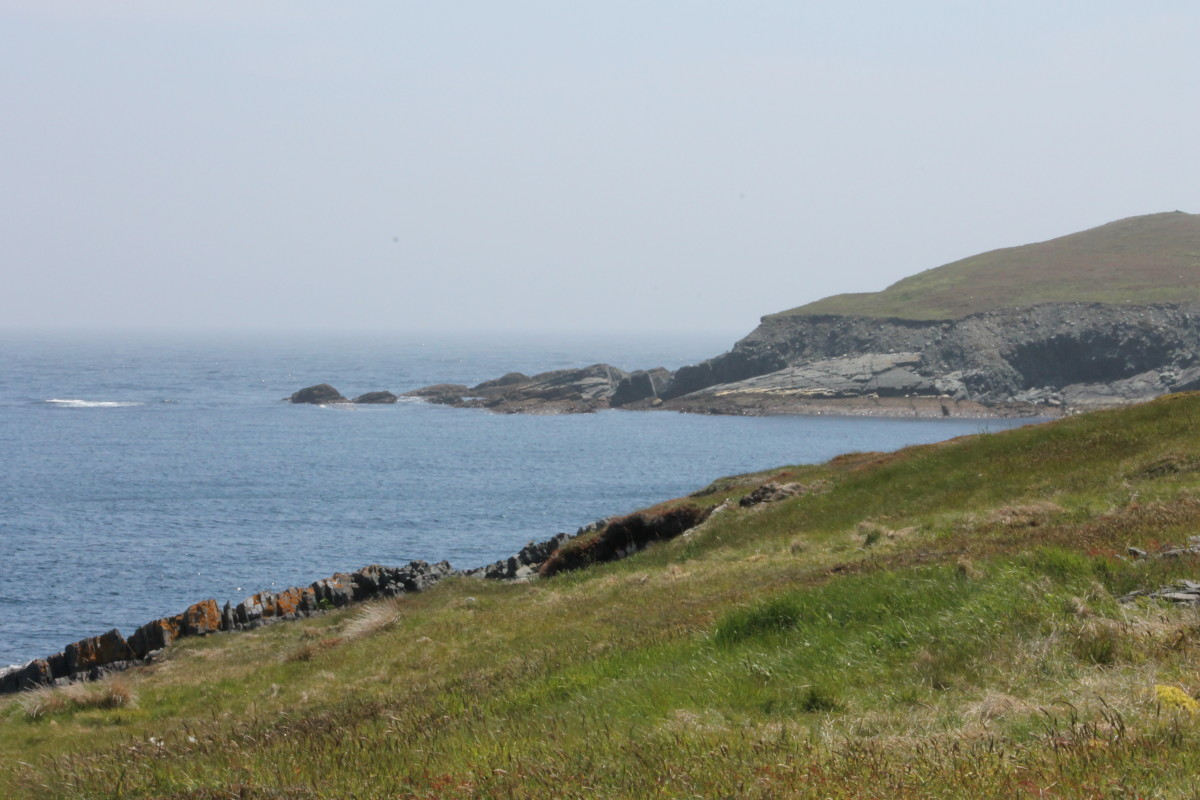 Part of the Rugged Coastline of Mistaken Point.