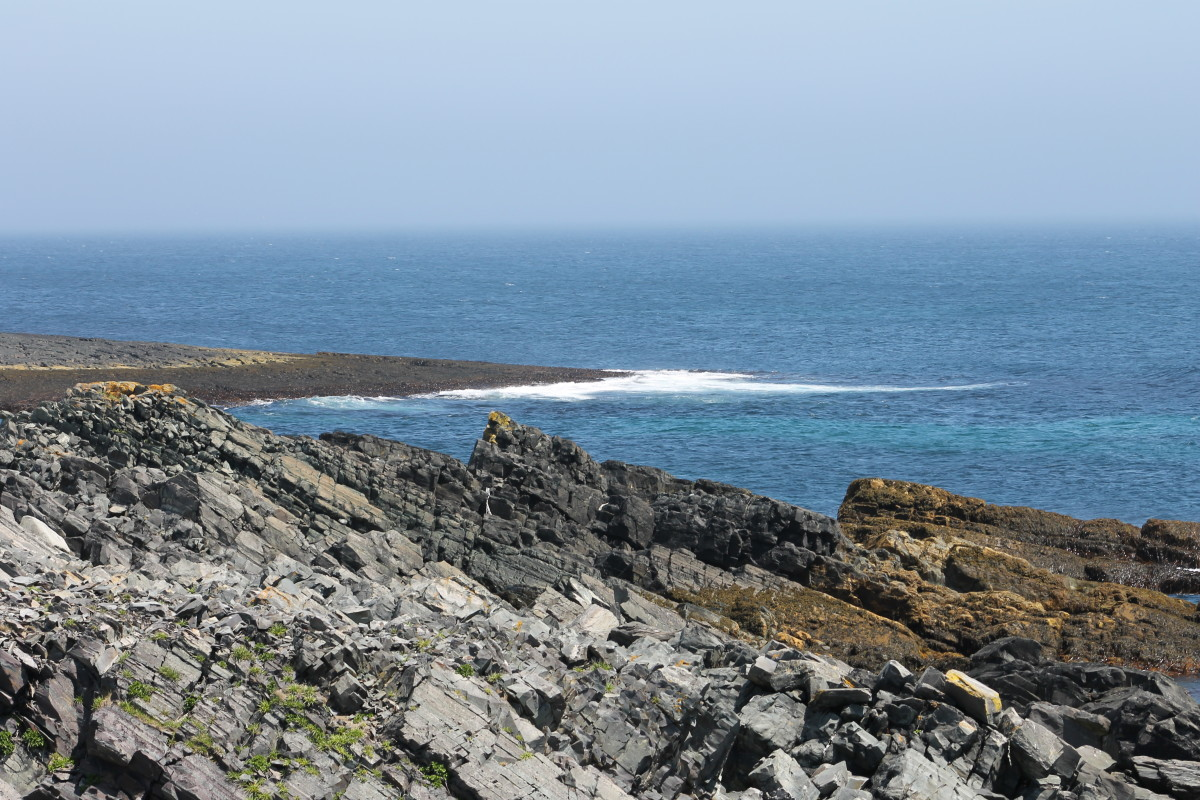 What was once layers of seabed is now exposed rock, pushed up almost vertical by the forces of plate tectonics.