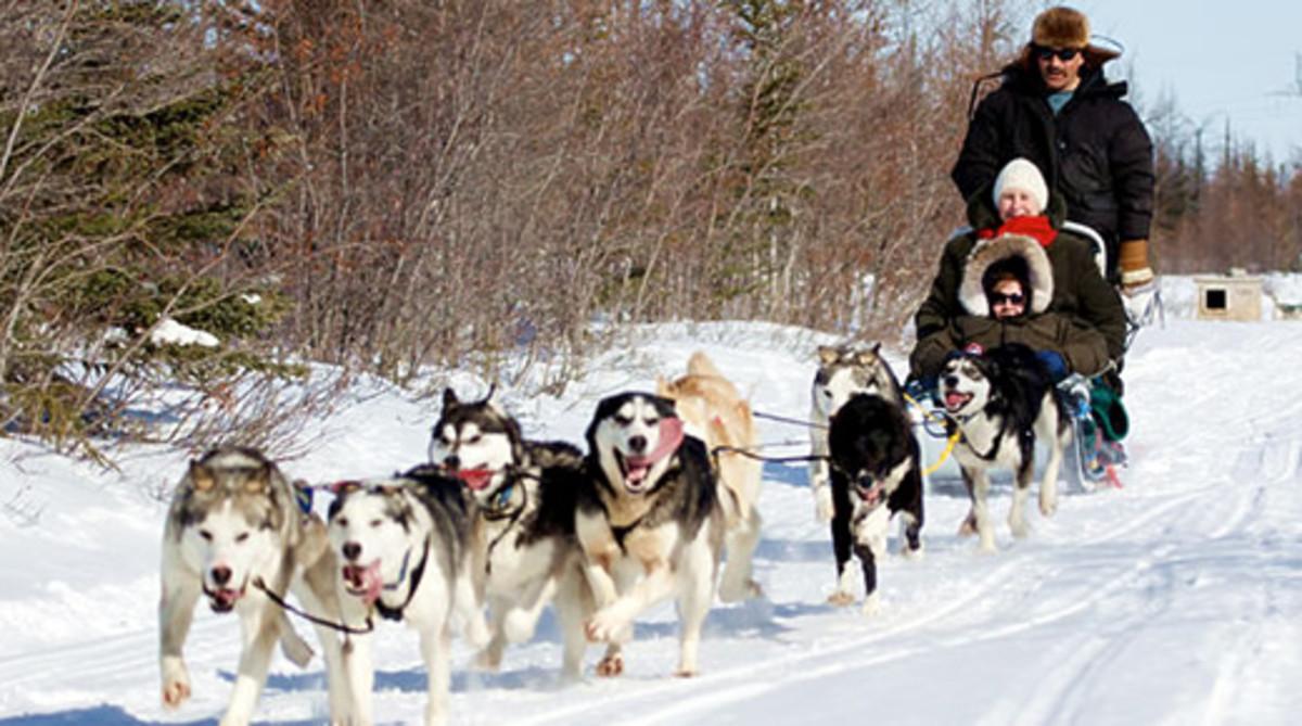 Dog Sledding in Churchill, Manitoba