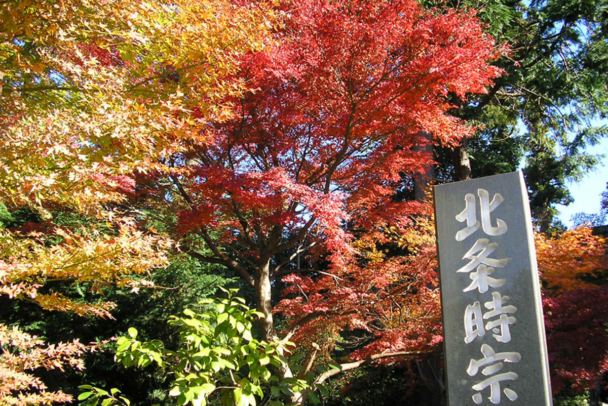Japan is breath taking during spring and autumn. But be ready for crowds, crowds, and crowds.