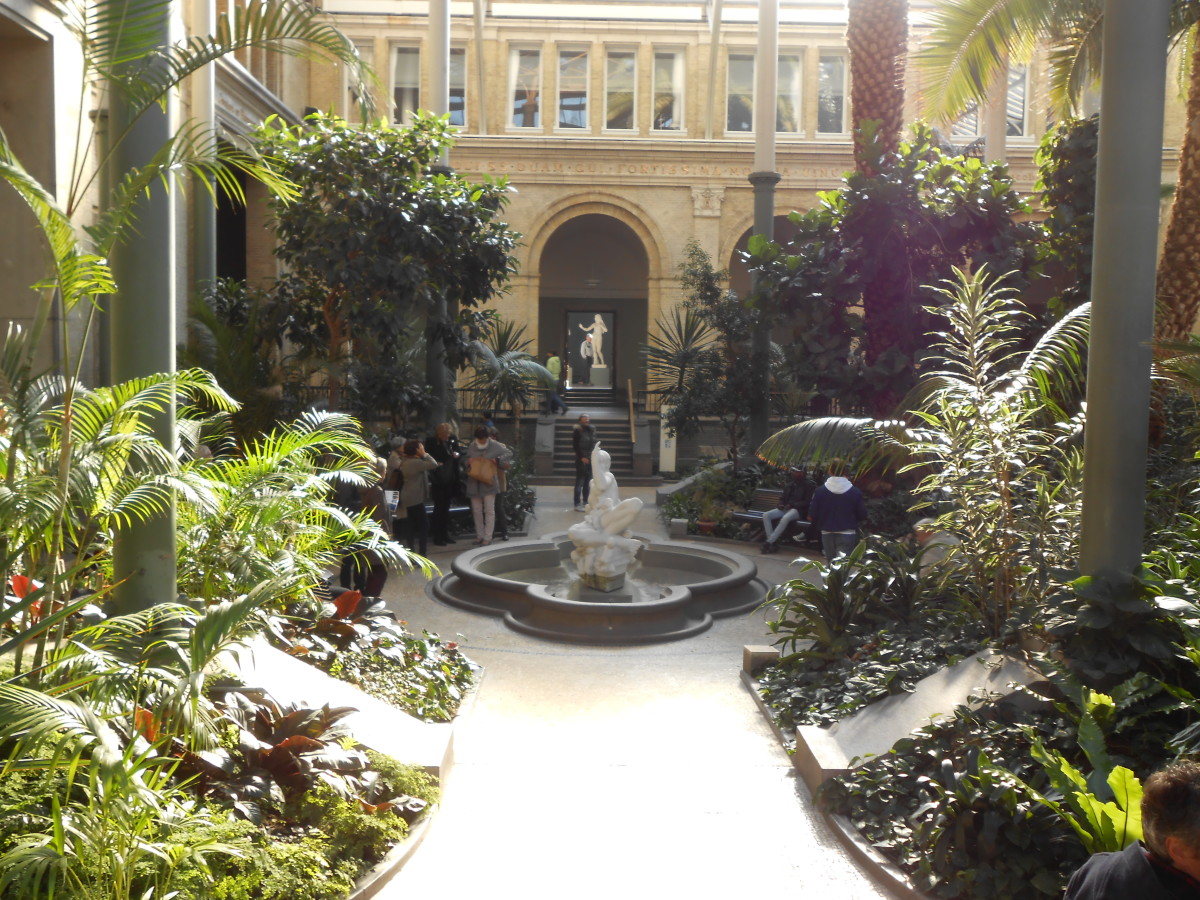 The indoor garden at the Carlsberg Glyptotek