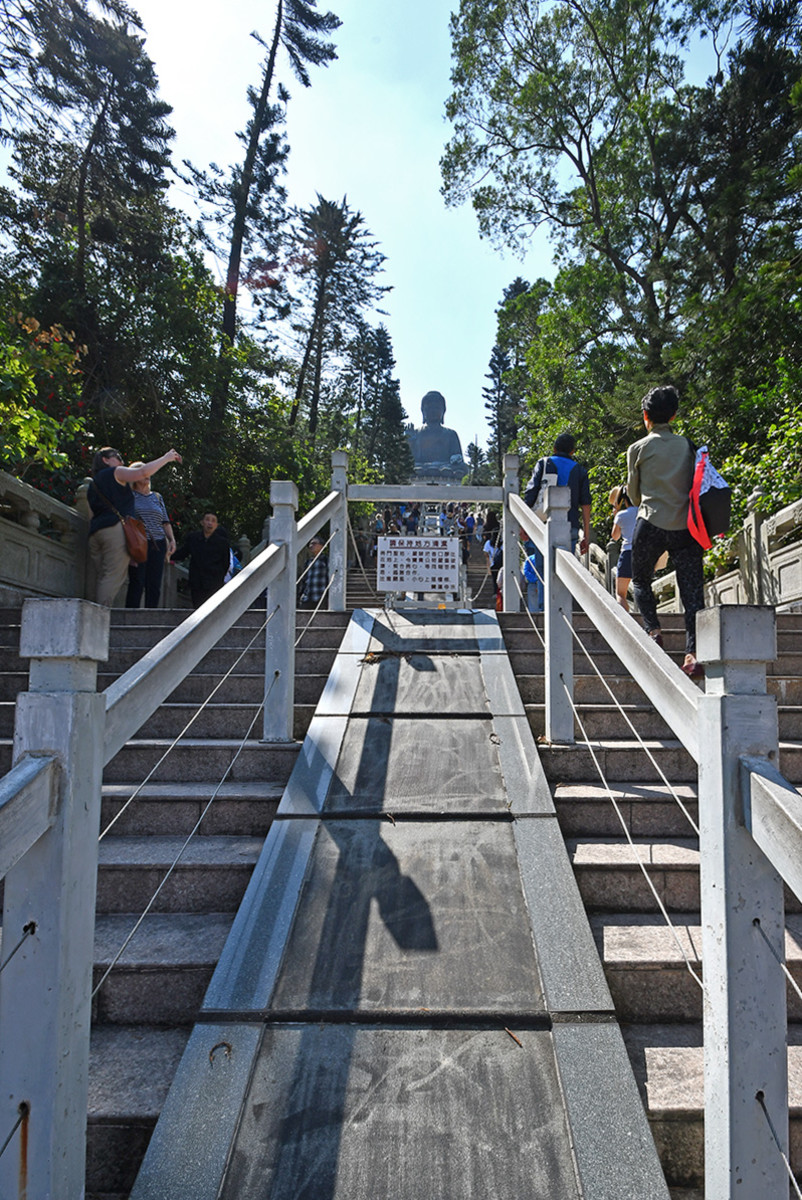 The very challenging steps leading to the Buddha.