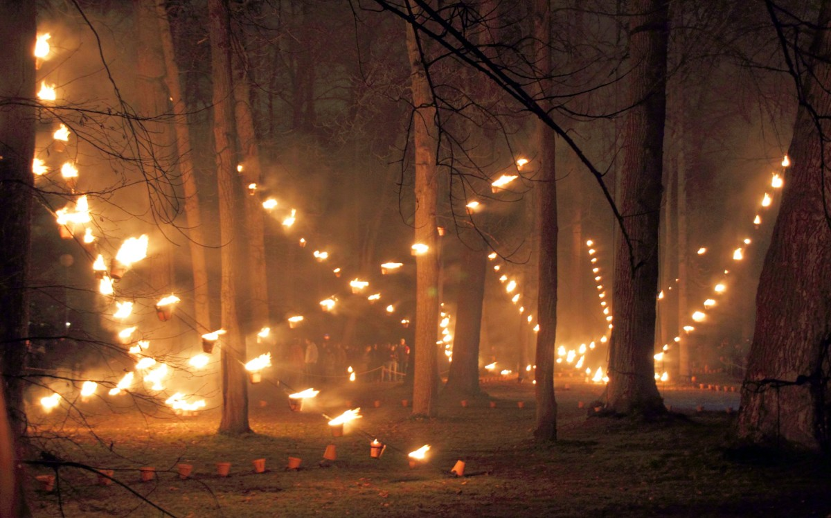Fire installation in the Parc de la Tête d'Or