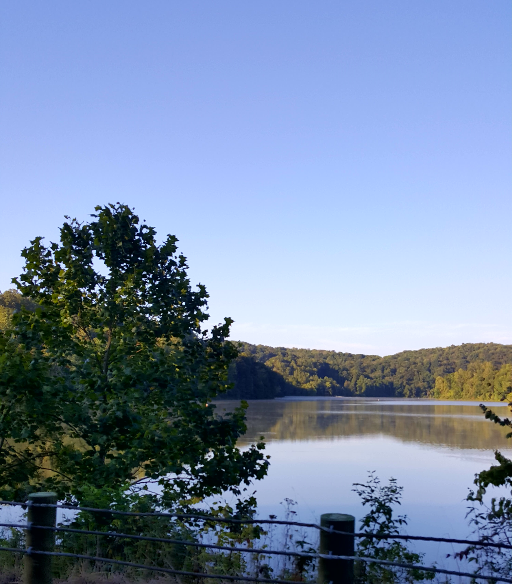 Another stunning view of Salt Fork Lake.