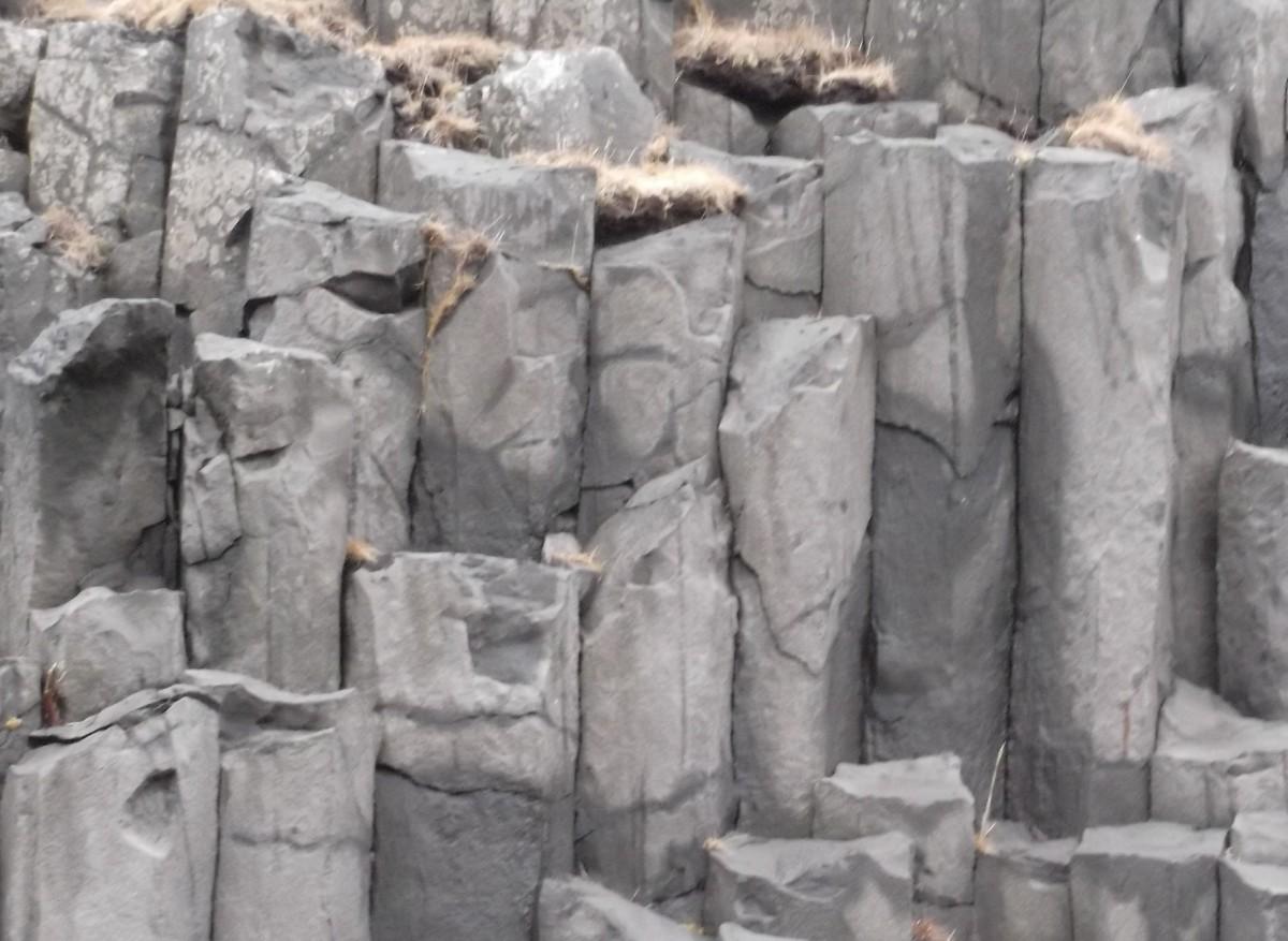 Nesting in Basalt Columns