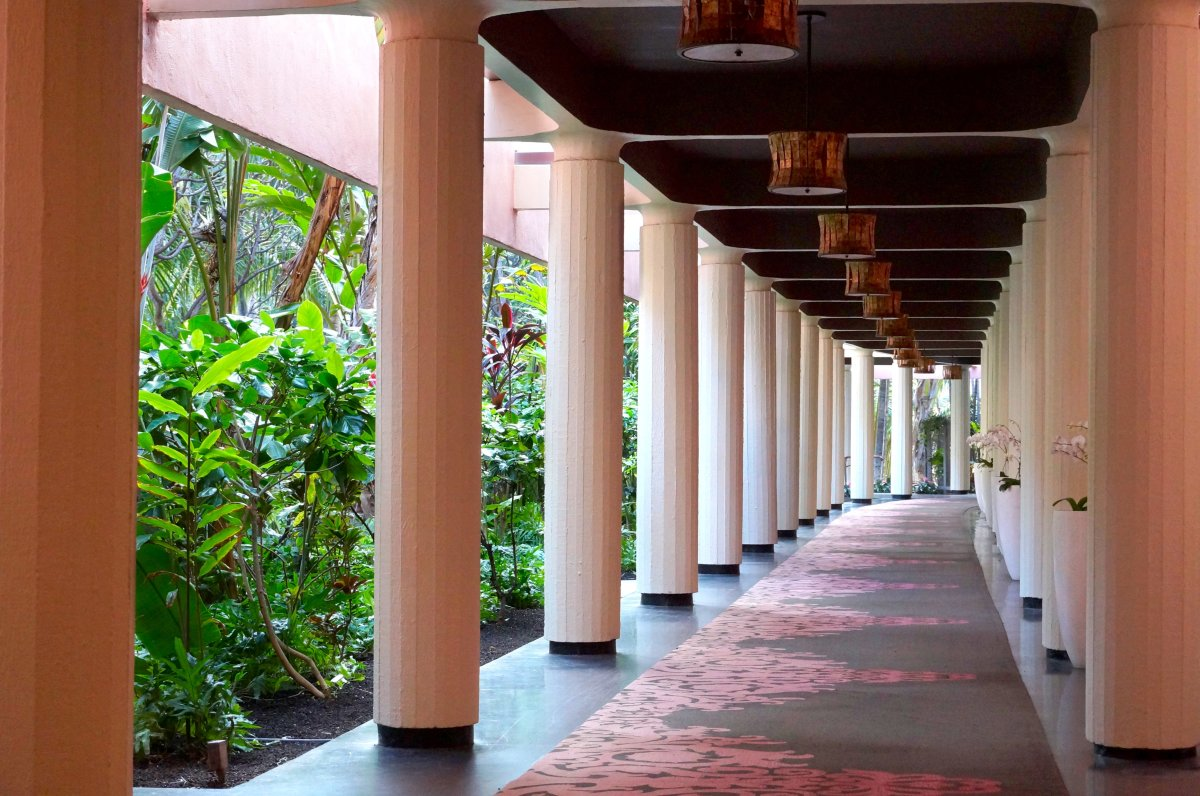 Orchid-lined corridor leading to a lush garden.