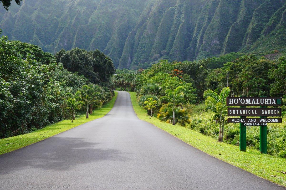 Ho'omaluhia Botanical Garden in Kaneohe, Oahu