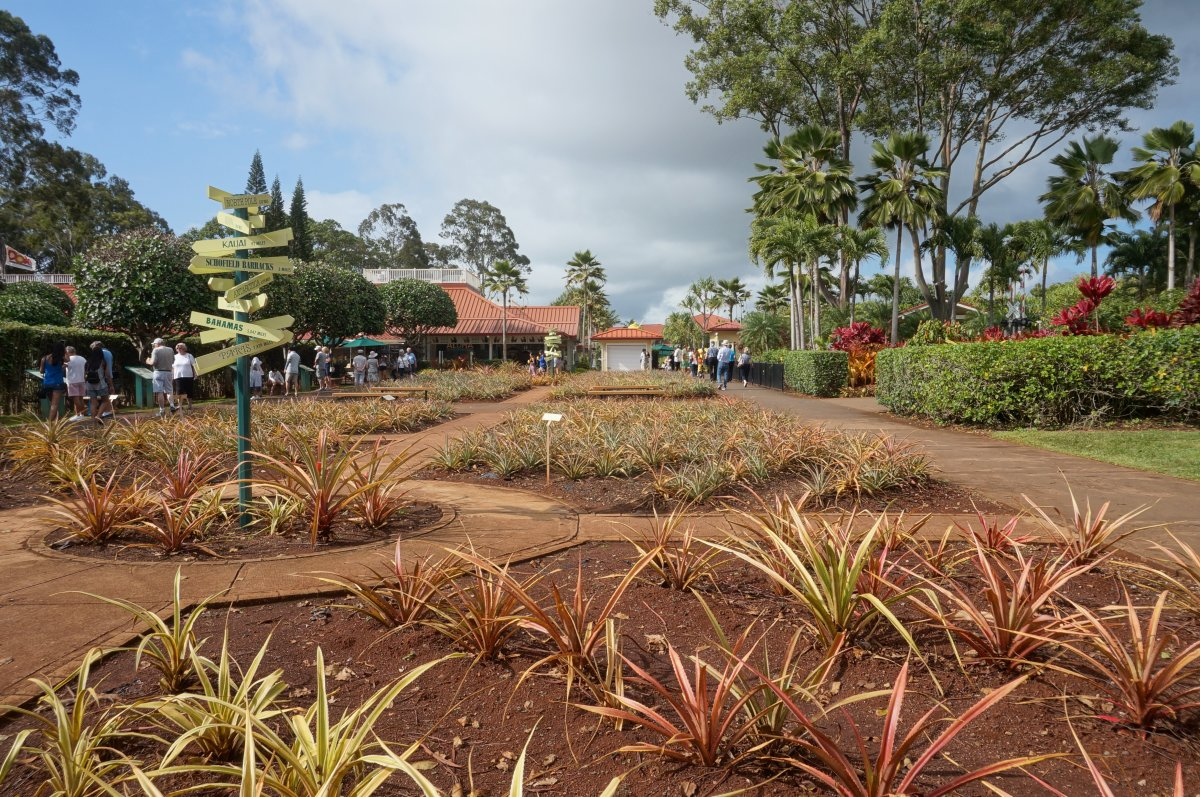 The Pineapple Variety Garden is free to visit.
