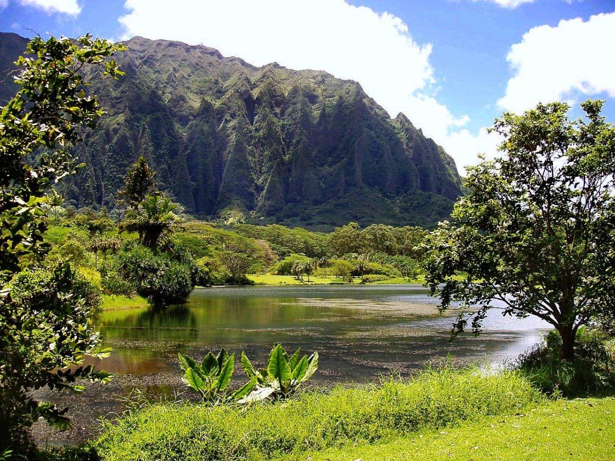Ho'omaluhia Botanical Garden's reservoir lake.